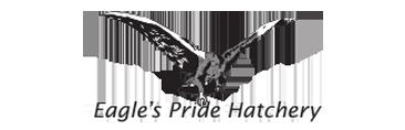 billow clients eagles pride hatchery